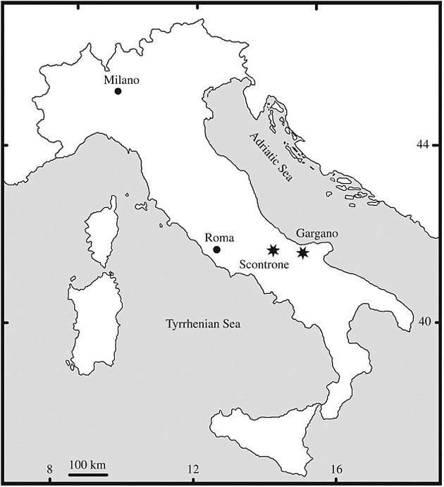 它们的化石是在意大利的加尔加诺地区被发现的。