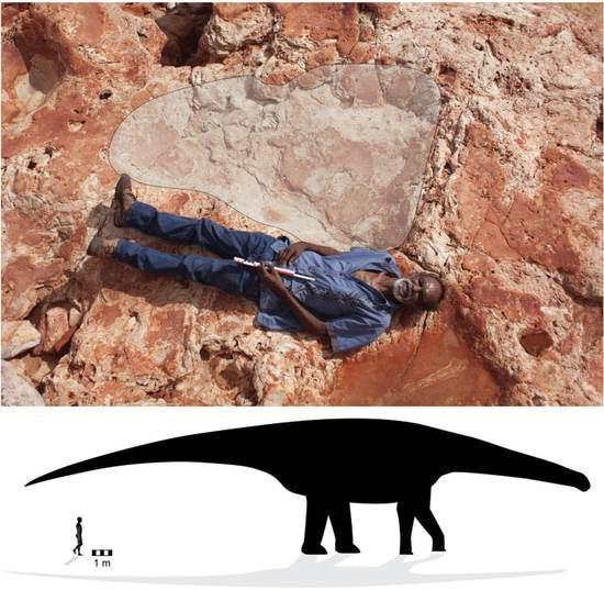 恐龙脚印和身高示意图 (图片来源:新闻聚合网站buzzfeed)