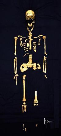 冲绳发现日本最古老全身人骨 距今约2.7万年(图)