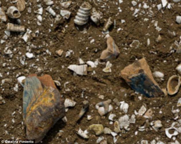 研究团队分析了上新世到更新世(530万年前到大约公元前9700年)之间的大型动物群化石。