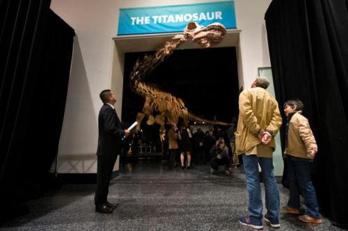 """""""最巨型""""恐龙长啥样:身长堪比波音客机?只吃素食"""