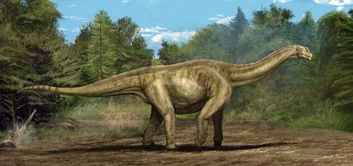 贵州茅台镇发现侏罗纪早期大型恐龙足迹群