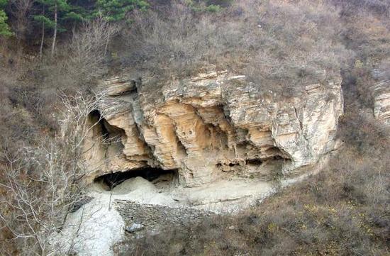 四万年前北京人DNA提取测序:第一个中国古人类基因组