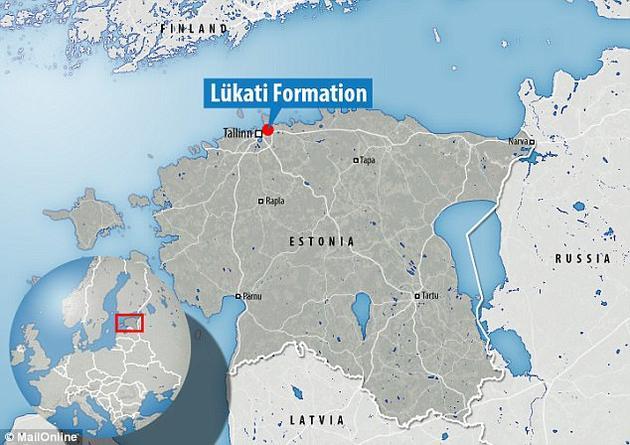 这件三叶虫化石发现于爱沙尼亚北部的Lükati组地层,可以追溯到寒武纪。