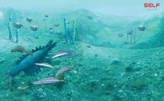 最早的脊椎动物出现在什么时候?出现在地球的哪里?